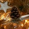 Una decoración natural para el árbol de Navidad