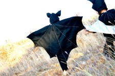Inspiración para disfraces: Batman