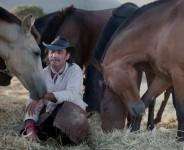 El hombre que susurraba a los caballos…