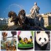 Madrid con niños: los mejores planes para disfrutar de la ciudad