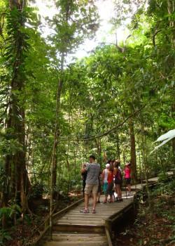 9 consejos para viajar con niños