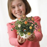 Manualidades infantiles: flores para todos