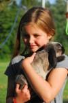 6 pequeñas mascotas para niños