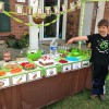 Ideas para fiestas infantiles de Minecraft