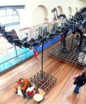 Planes con niños, los mejores museos de Madrid