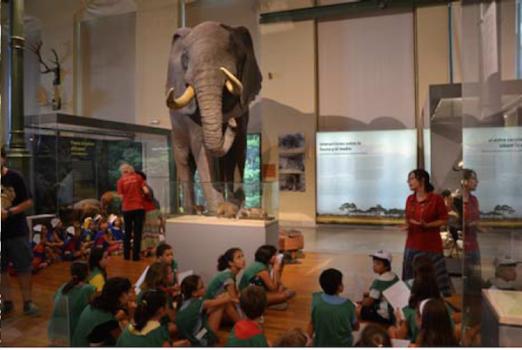 Campamentos de verano en Madrid: ¡todos al Museo!