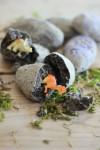 Dinosaurios para niños, cómo hacer piedras fósiles