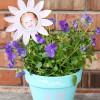 Regalar plantas para el Día de la Madre