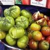 Agricultura ecológica, llévate el huerto a casa…