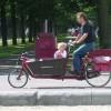Viajar a Amsterdam con niños