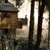 Cabanes als arbres, dormir en una cabaña en España