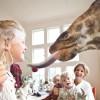 Hotel en Nairobi con jirafas