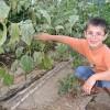 Talleres infantiles gratuitos: Hábitat Madrid invierno