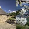 Valle del Jerte, ven a ver el Cerezo en Flor