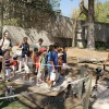 Zoo de Madrid: ¡disfruta sus talleres infantiles!
