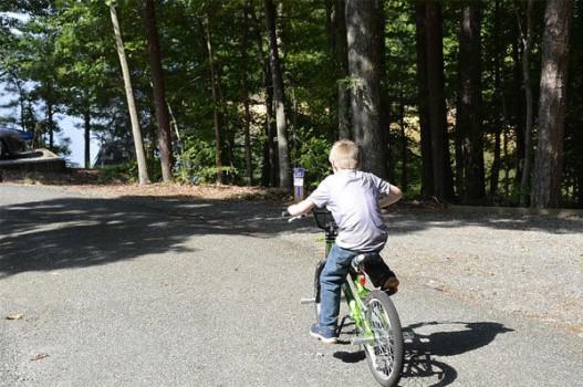 ¡Un paseo en bicicleta gratis en el Parque de Pozuelo!