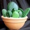 Cómo hacer cactus con piedras pintadas paso a paso