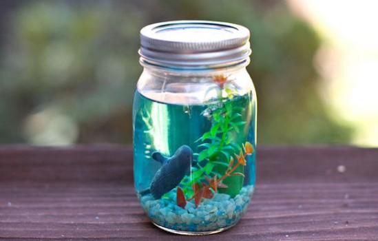 Cómo hacer un acuario en un frasco
