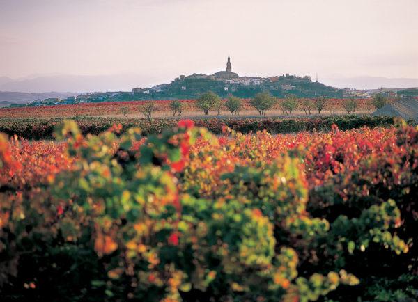 Visitar La Rioja_Briones