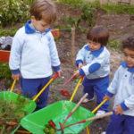 Actividades para niños al aire libre