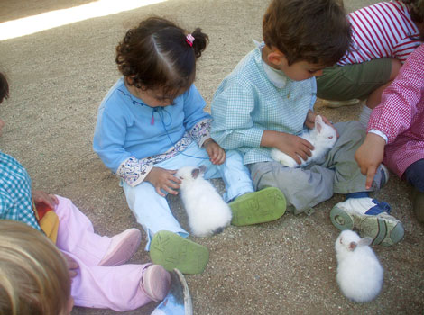 Actividades para niños cerca de Madrid