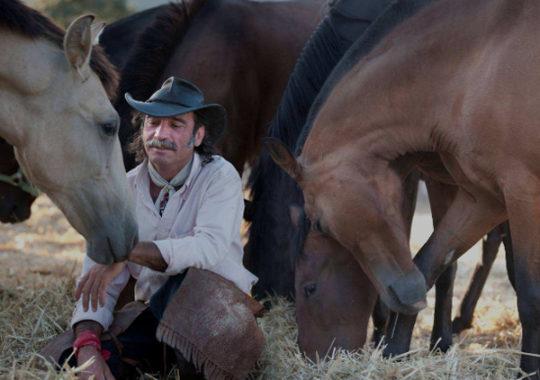 Fernando Noailles caballos