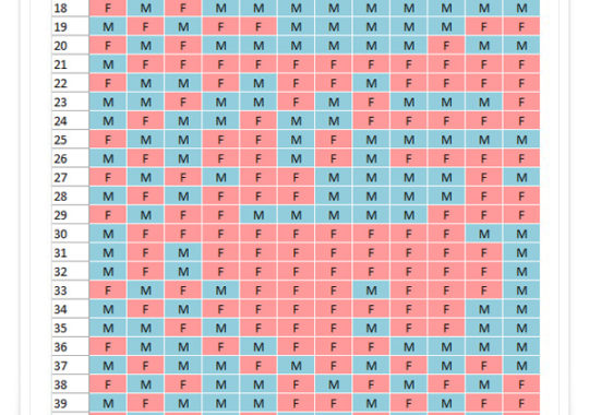 Calendario chino niño o niña