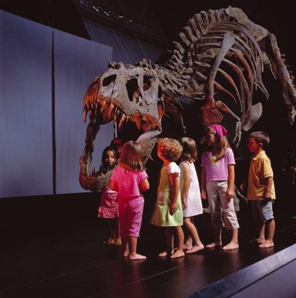 Viajar por Aragón con niños