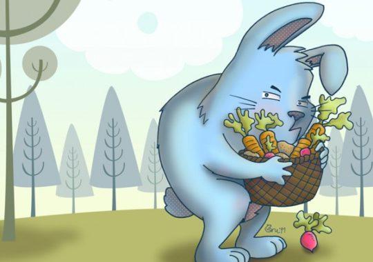 Cuento de El conejo gruñón 5