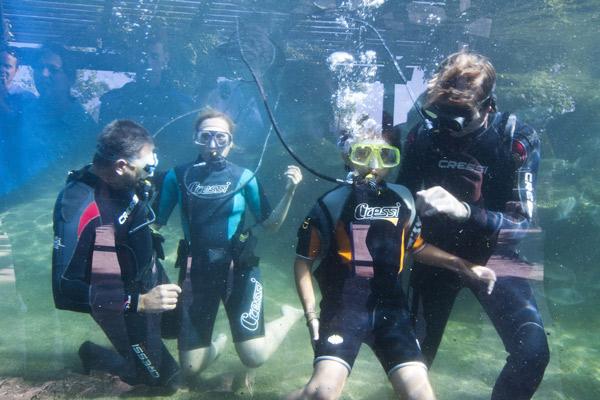 Ocio para niños en verano: Palma Aquarium