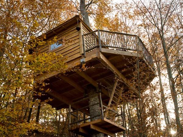 Cabanes als arbres exterior