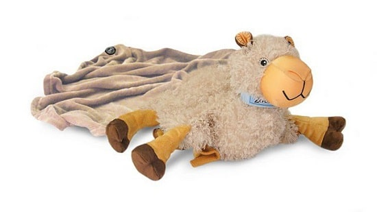 Zoobie camello manta