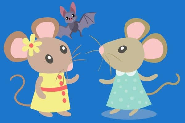 chistes de animales ratitas