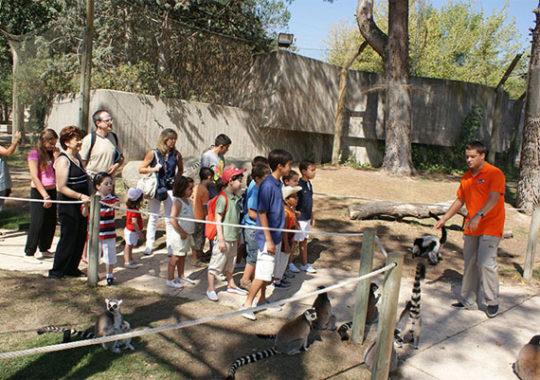 Talleres infantiles en Madrid: Zoo Aquarium