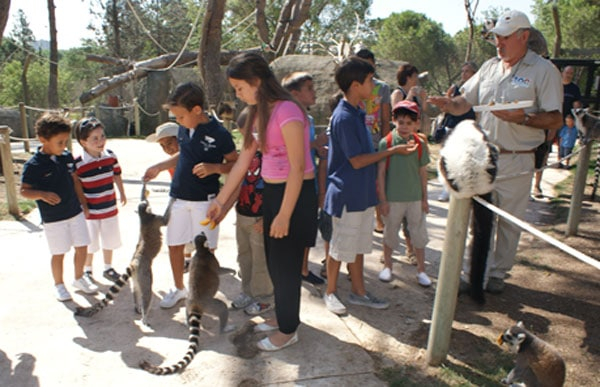 Talleres infantiles en Madrid: Zoo Aquarium