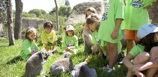 Zoo de Madrid campamentos de verano