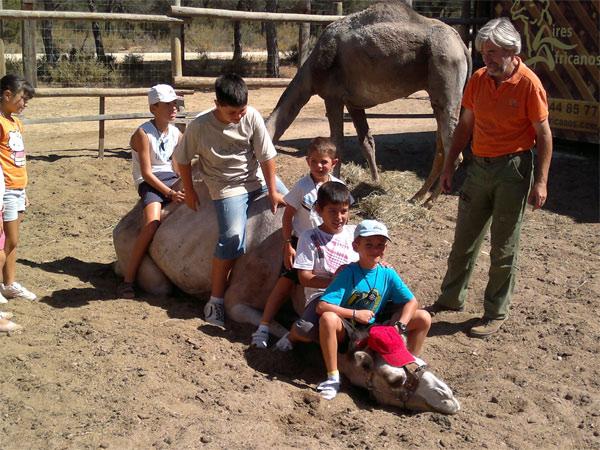 Vacaciones con niños, ¡viajes divertidos en familia!