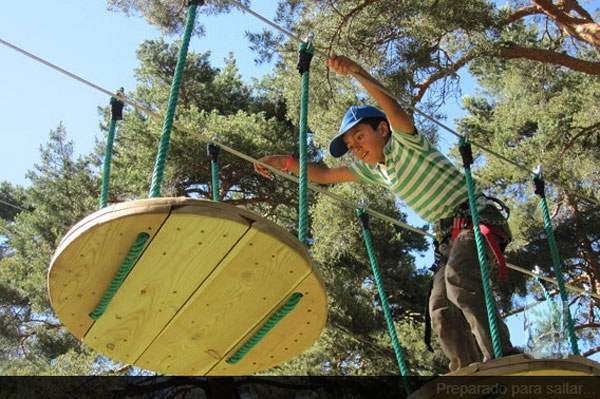 De Pino a Pino, aventuras en la Sierra de Madrid