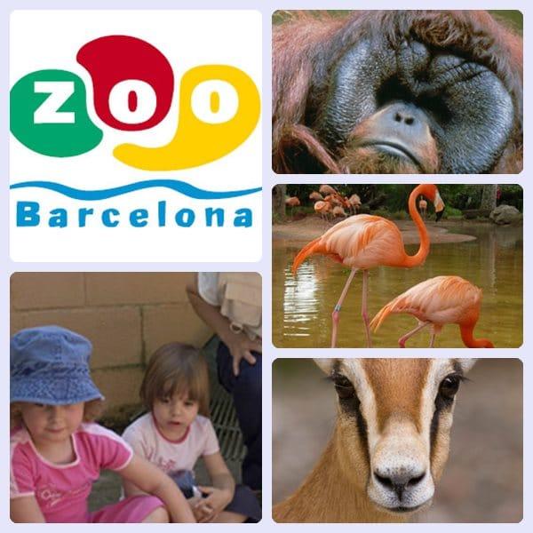 Talleres para niños 2013 del Zoo de Barcelona