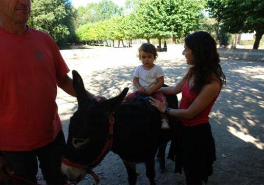 Taller para pequeños granjeros en Barcelona