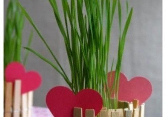 manualidad con pinzas para san valentín