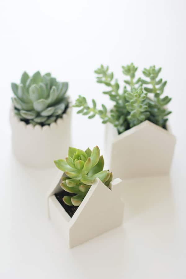 Regalos caseros para d a de la madre maceteros for Casas decoradas con plantas naturales