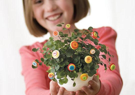 Flores para hacer con los ñinos