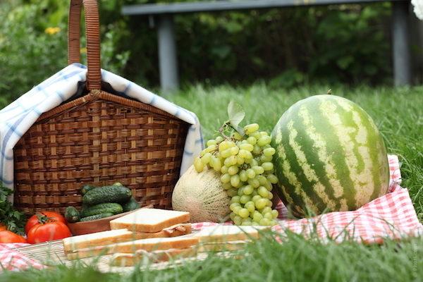 Recetas para un picnic divertido
