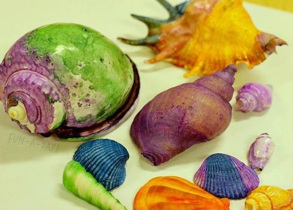 cómo pintar conchas marinas
