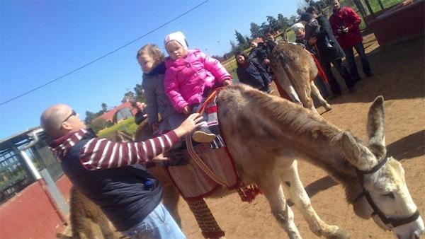 Ocio infantil en Sevilla: Granja escuela Finca Albahaca