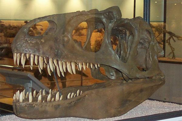 Imaginad sus caras al ver las maquetas de dinosaurios ¡de tamaño