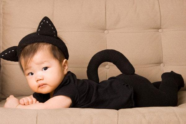 12 disfraces de animales y m s ideas caseras pequeocio - Disfrazes de bebes ...
