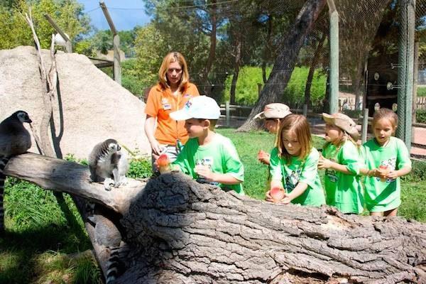Campamentos de verano del Zoo Aquarium