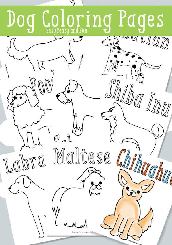 40 Dibujos Para Colorear De Animales Pequeocio Com